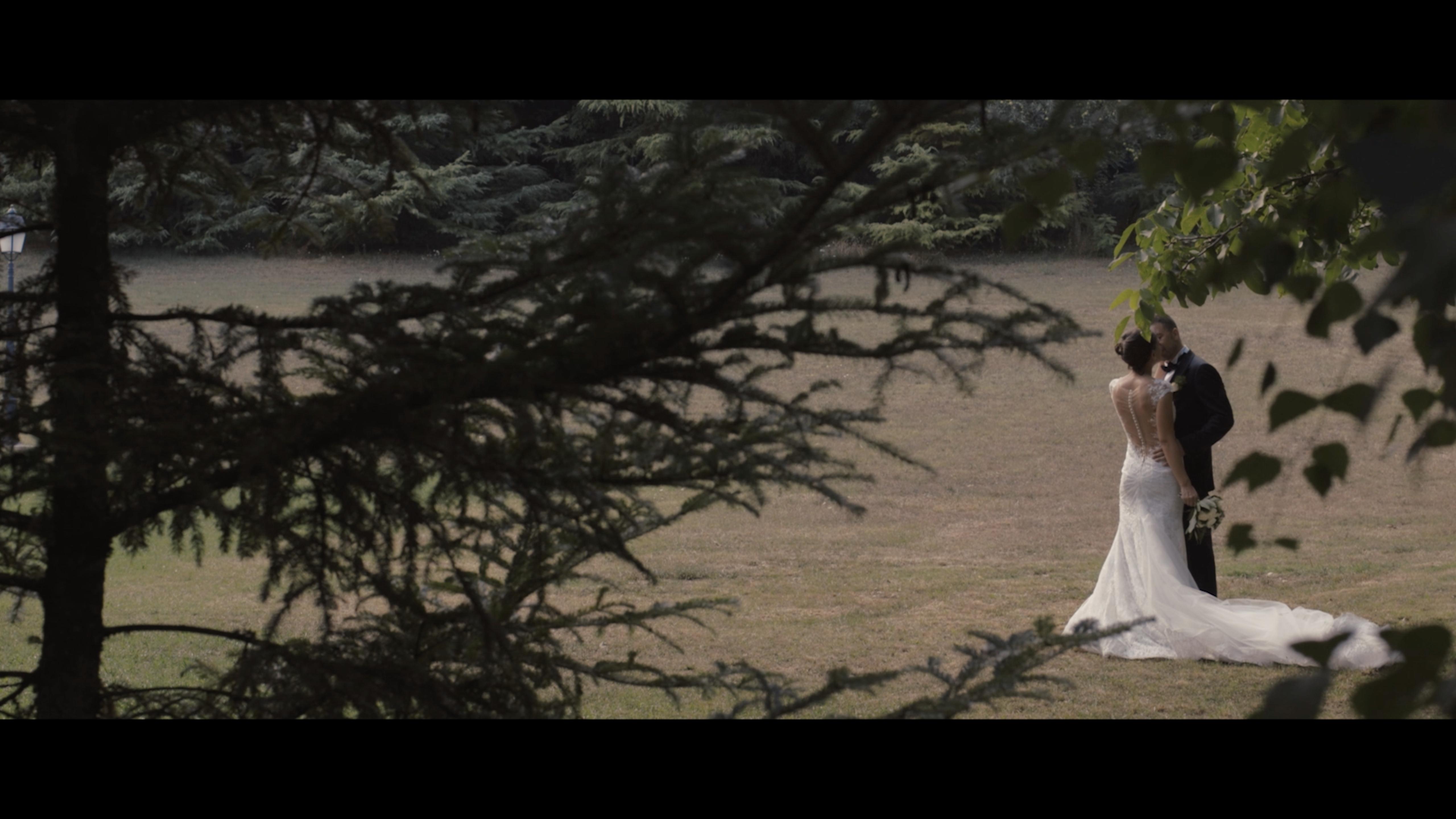 sposi tra gli alberi